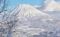 Niseko ON SALE NOW